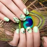 Art design manicure with peacock feather on female hands