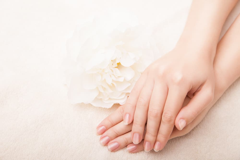 Beautiful hand with perfect nail french manicure and white flower